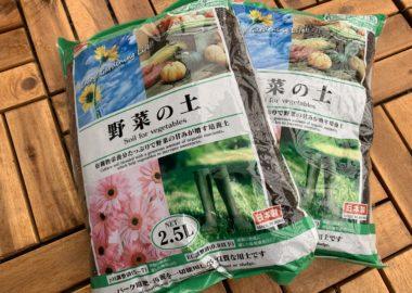 ダイソーの野菜の土