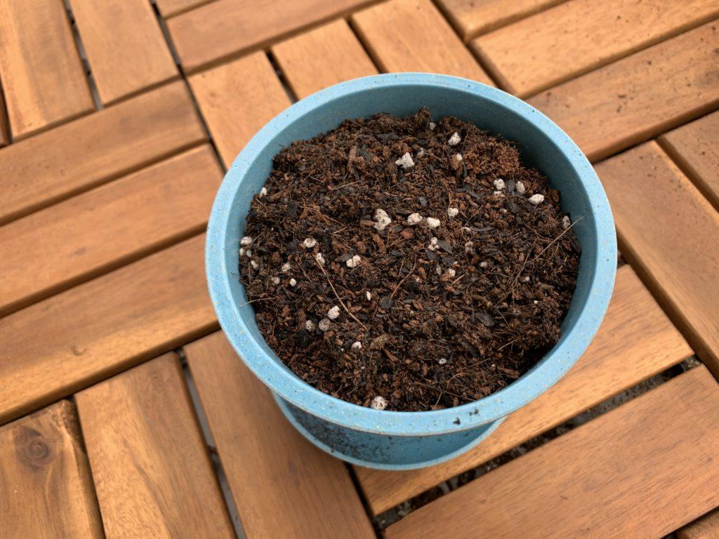 ポットに入れたダイソー野菜の土
