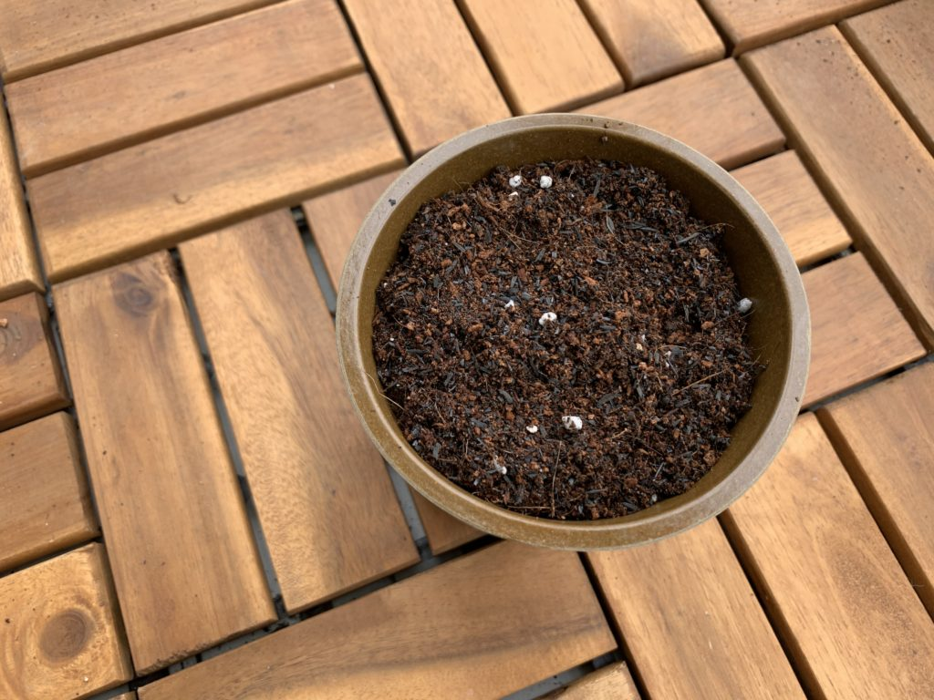 ポットに入れたセリア花と野菜の土