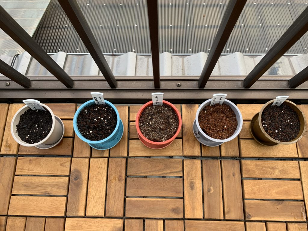 綺麗に並べた野菜のタネを植えたポット