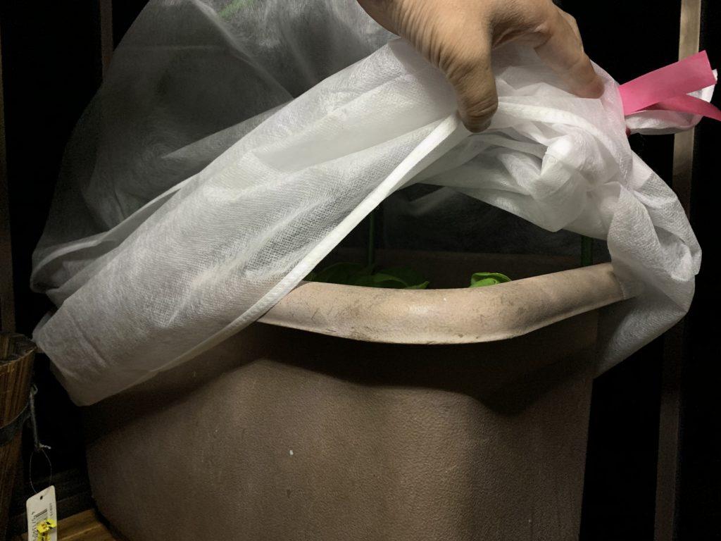 すぐに取り外せる不織布カバー