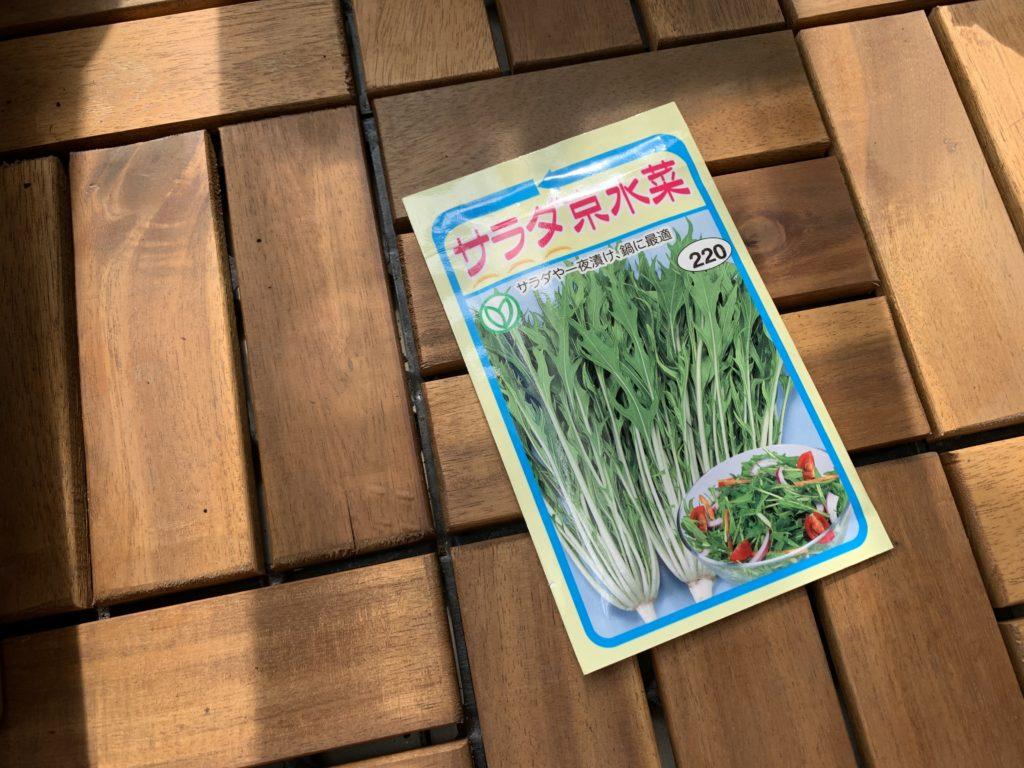 サラダ京水菜のタネ