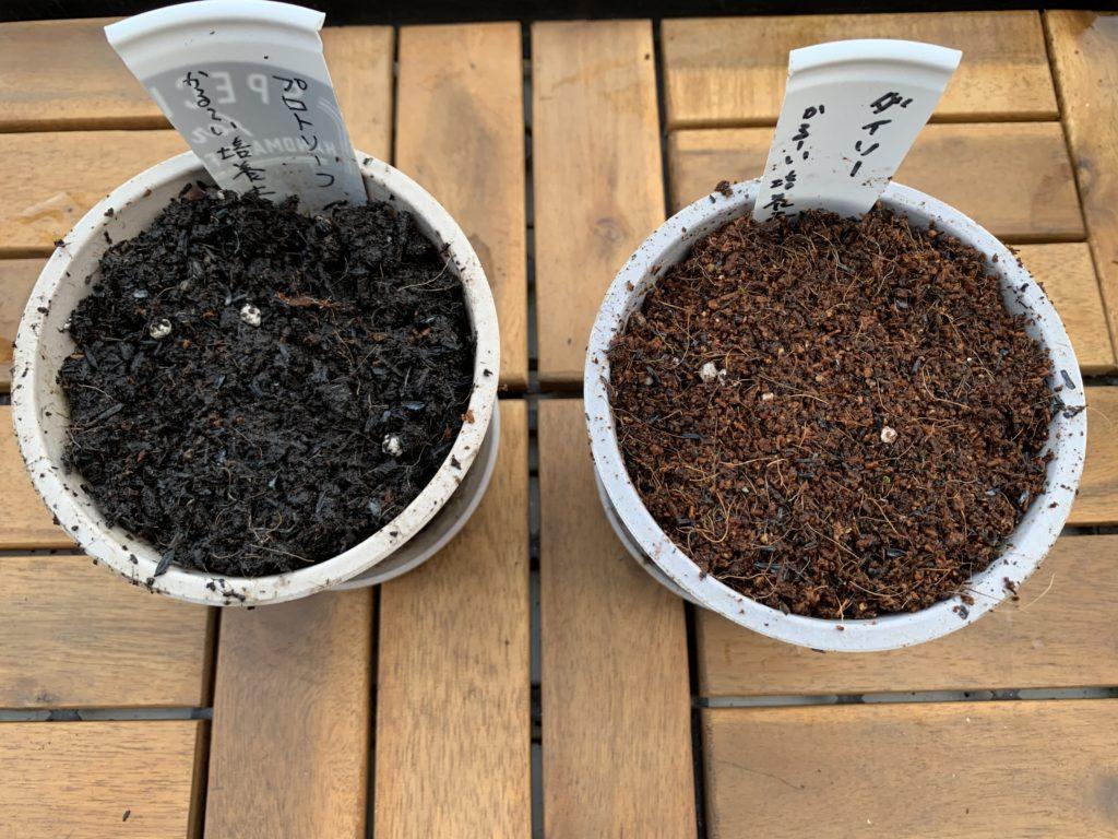 くん炭と元肥を入れて混ぜ合わせた培養土を入れたプランター
