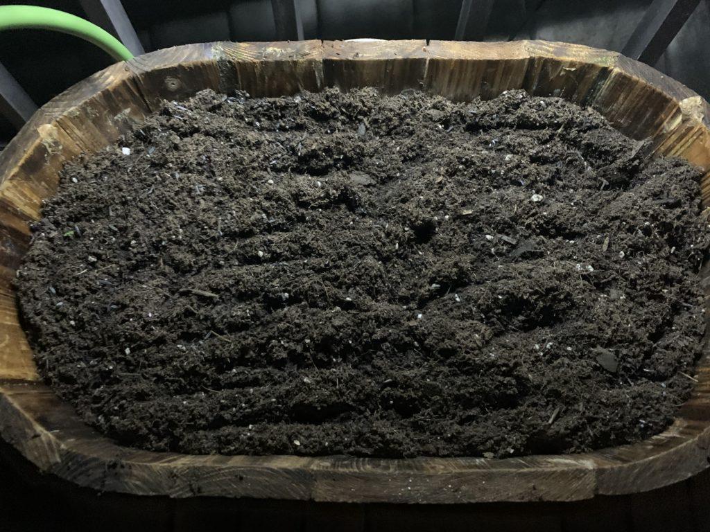 土壌改良したプランターの培養土