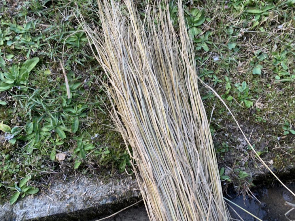 乾燥させた藁