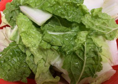 包丁で切った白菜の葉っぱ