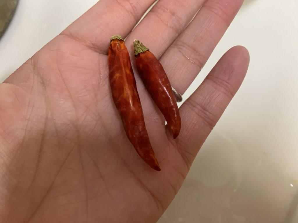 鮮やかな色の赤唐辛子