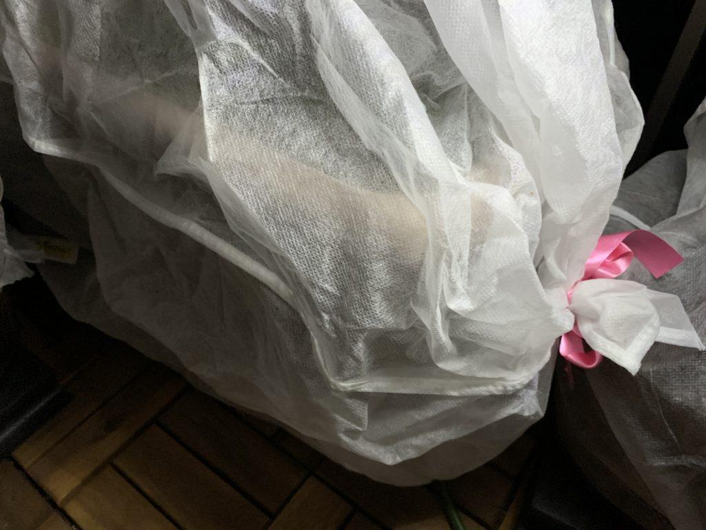 温かい不織布のカバーをかけたサニーレタスのプランター