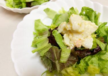 玉レタスのホッキ貝のサラダをトッピングした玉レタスのサラダ
