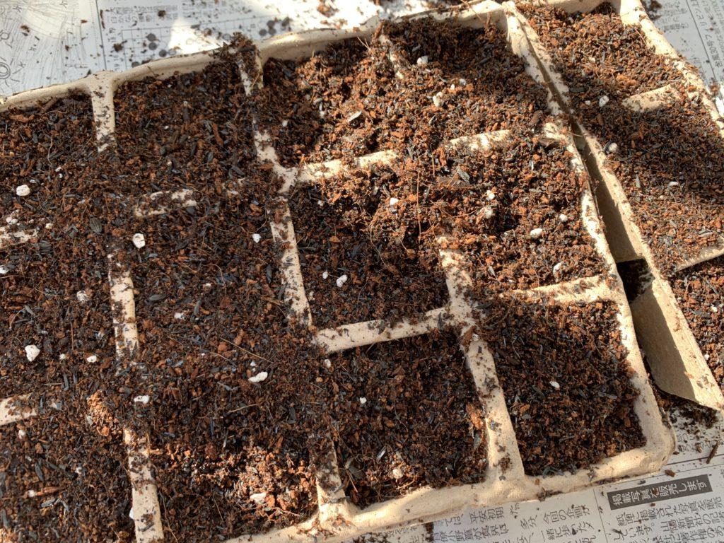 紙ポットの中に入れた培養土