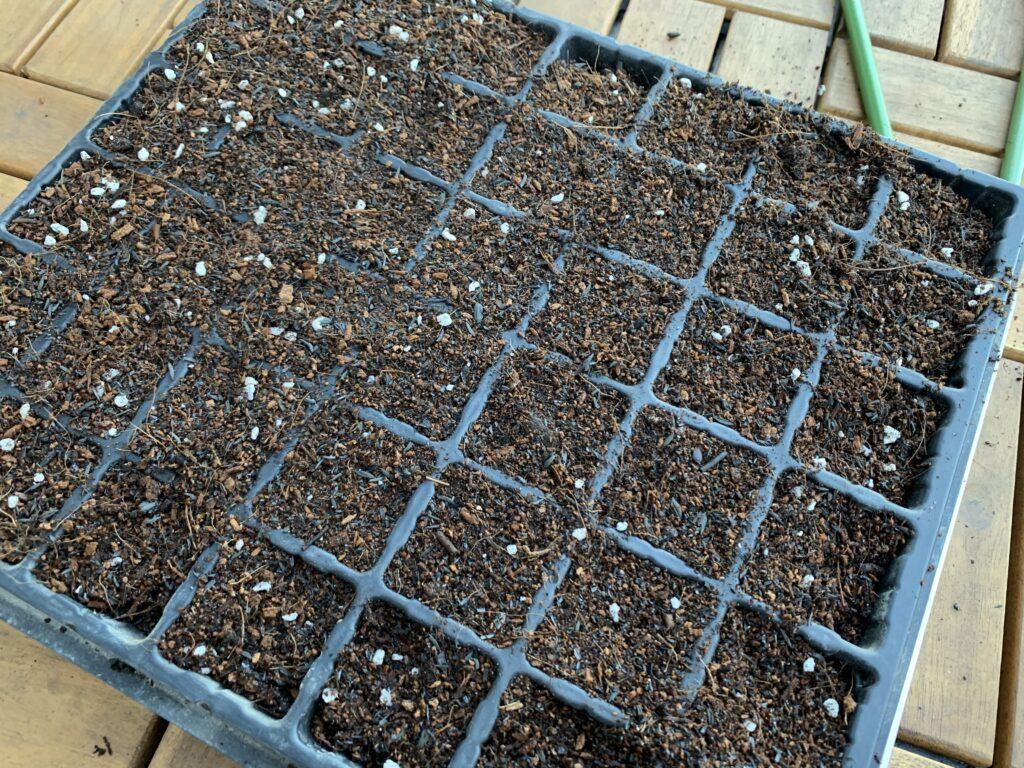 苗ポットの穴に培養土を入れた様子