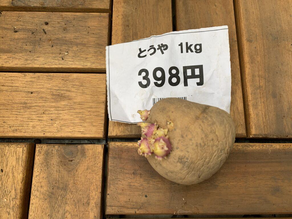 とうやの種芋