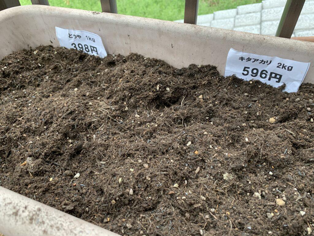 種芋を植えたプランター