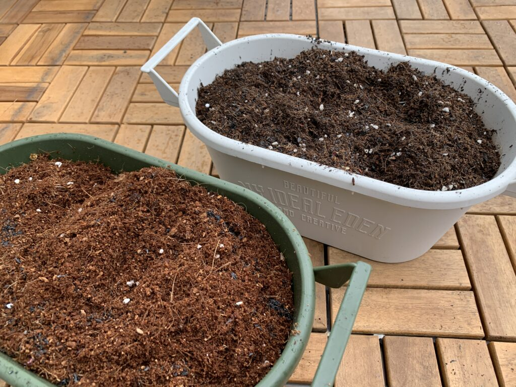 ルッコラを栽培していたプランター