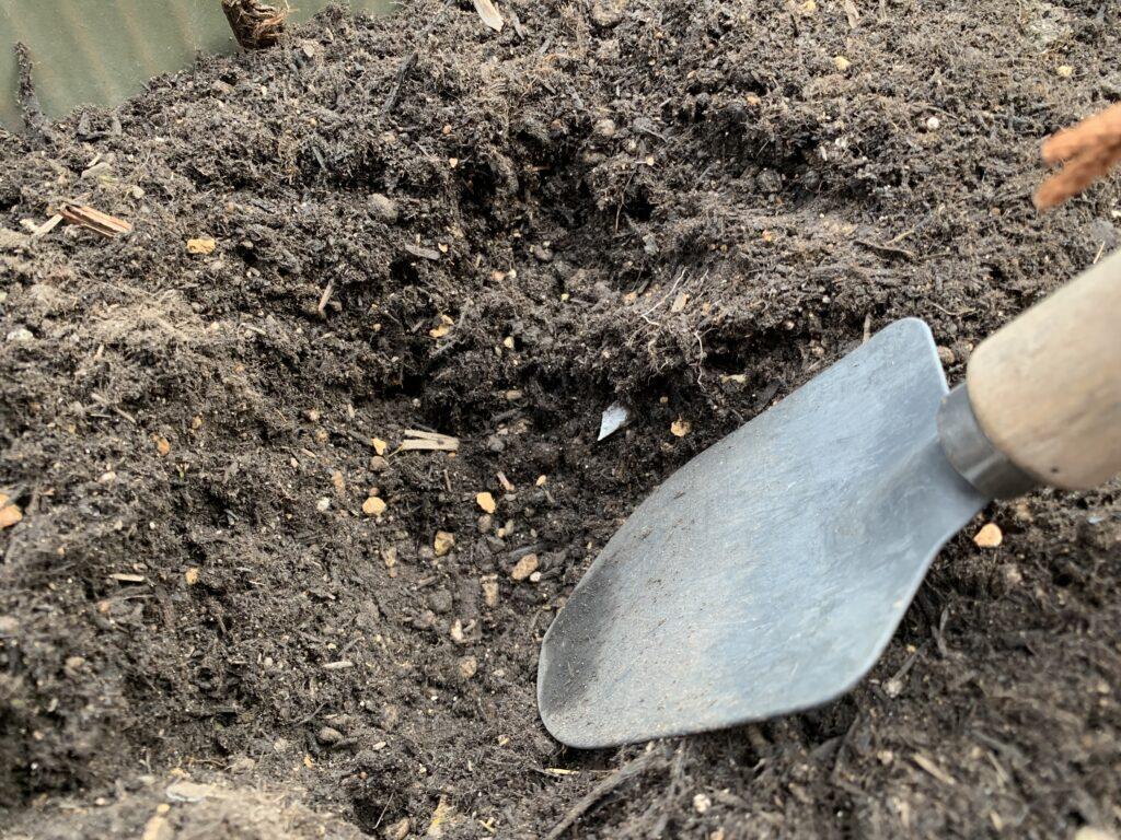 プランターに苗を植える穴をつくる