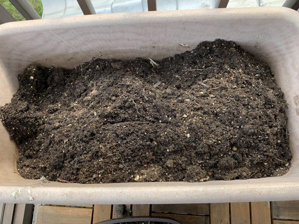 きゅうりの茎などを取り除いたプランターの様子