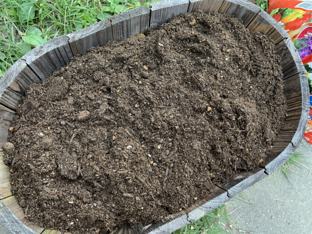 プランターに入れた培養土